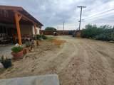 31542 Sierra Del Sol - Photo 12