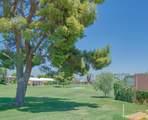 47430 Rabat Drive - Photo 45