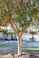 50825 Los Palos Road - Photo 3
