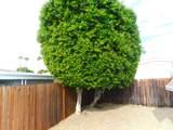 73912 Desert Greens Drive - Photo 5