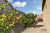 42798 Brienno Court - Photo 29