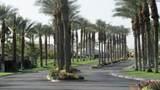 44588 Heritage Palms Drive - Photo 15