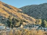 51889 Canyon Road - Photo 47