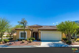 1067 Alta Cresta, Palm Springs, CA 92262 (MLS #17214756PS) :: Brad Schmett Real Estate Group