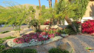 467 S Calle El Segundo D10, Palm Springs, CA 92262 (MLS #17214772PS) :: Brad Schmett Real Estate Group