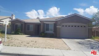 13814 Oasis Drive, Desert Hot Springs, CA 92240 (MLS #17216140) :: Brad Schmett Real Estate Group