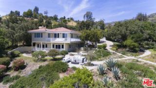 21930 Carbon Mesa Road, Malibu, CA 90265 (MLS #17224968) :: Deirdre Coit and Associates
