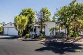 174 Larson Drive, Cathedral City, CA 92234 (MLS #17226060PS) :: Deirdre Coit and Associates