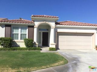 3597 Desert Sunset Way, Palm Springs, CA 92262 (MLS #17232280PS) :: Brad Schmett Real Estate Group