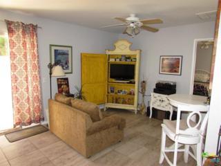 2867 Sunflower Loop, Palm Springs, CA 92262 (MLS #17233384PS) :: Brad Schmett Real Estate Group