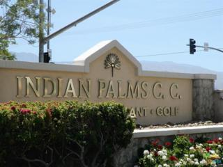 82369 Gable, Indio, CA 92201 (MLS #17234896PS) :: Hacienda Group Inc