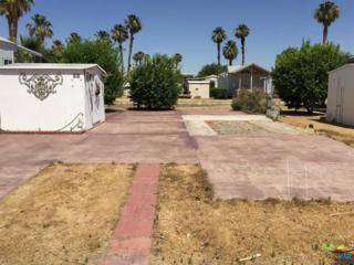 81620 Avenue 49 58A, Indio, CA 92201 (MLS #17235348PS) :: Brad Schmett Real Estate Group
