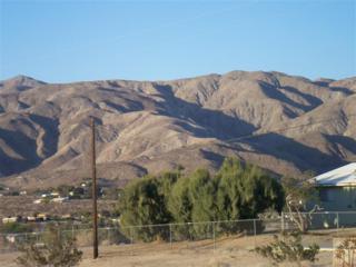 19735 Kris Avenue, Sky Valley, CA 92241 (MLS #216023290) :: Hacienda Group Inc