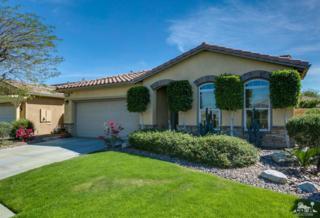 1321 Solana Trail, Palm Springs, CA 92262 (MLS #217008556) :: Brad Schmett Real Estate Group