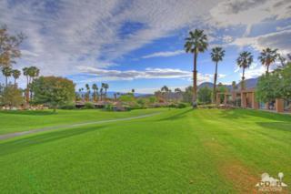 73526 Dalea Lane, Palm Desert, CA 92260 (MLS #217009062) :: Brad Schmett Real Estate Group