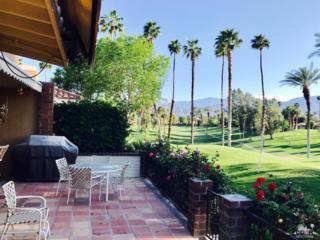 299 Tolosa Circle, Palm Desert, CA 92264 (MLS #217009174) :: Brad Schmett Real Estate Group
