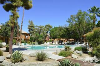 48255 Monroe Street #37, Indio, CA 92201 (MLS #217009272) :: Brad Schmett Real Estate Group