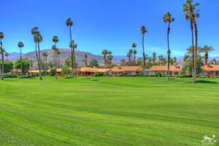 367 Gran, Palm Desert, CA 92260 (MLS #217009384) :: Brad Schmett Real Estate Group