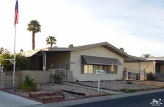 39849 Black Mesa Lane, Palm Desert, CA 92260 (MLS #217009740) :: Brad Schmett Real Estate Group