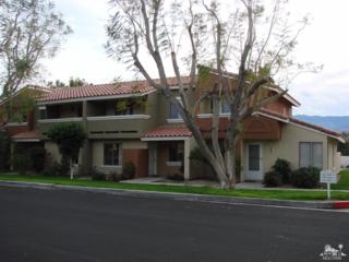 448 Tava Lane, Palm Desert, CA 92211 (MLS #217009908) :: Brad Schmett Real Estate Group