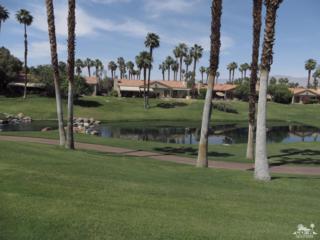 76558 Begonia Lane, Palm Desert, CA 92211 (MLS #217010852) :: Brad Schmett Real Estate Group