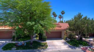38270 Plumosa Circle, Palm Desert, CA 92211 (MLS #217011084) :: Brad Schmett Real Estate Group