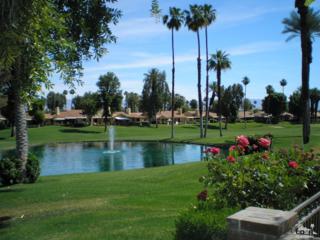 248 Castellana S, Palm Desert, CA 92260 (MLS #217011964) :: Brad Schmett Real Estate Group