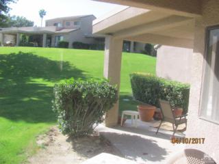 72485 Desert Flower Drive, Palm Desert, CA 92260 (MLS #217011972) :: Brad Schmett Real Estate Group