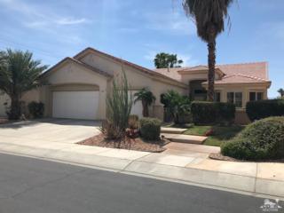 78879 Canyon Vista Vista, Palm Desert, CA 92211 (MLS #217012054) :: Brad Schmett Real Estate Group