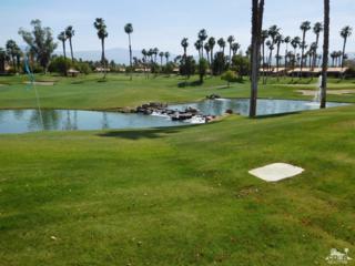 38023 Crocus Lane, Palm Desert, CA 92211 (MLS #217012438) :: Deirdre Coit and Associates