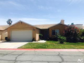 47800 Madison Street #193, Indio, CA 92201 (MLS #217012554) :: Deirdre Coit and Associates