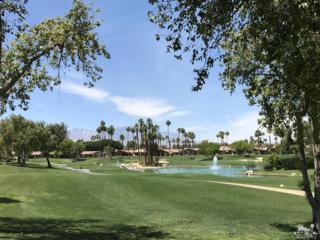 116 Old Ranch Road, Palm Desert, CA 92211 (MLS #217012618) :: Deirdre Coit and Associates