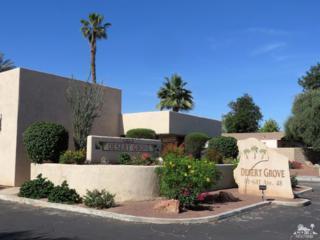 81641 Avenue 48 #3, Indio, CA 92201 (MLS #217013304) :: Hacienda Group Inc