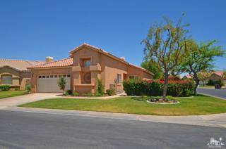 45652 Torrey Pines Court, Indio, CA 92201 (MLS #217013330) :: Brad Schmett Real Estate Group