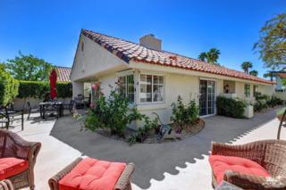 77702 Calle Las Brisas N, Palm Desert, CA 92211 (MLS #217014158) :: Brad Schmett Real Estate Group