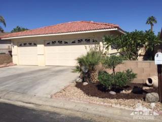 81641 Avenue 48 #60, Indio, CA 92201 (MLS #217014192) :: Brad Schmett Real Estate Group