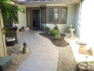 284 Green Mountain Drive Drive, Palm Desert, CA 92211 (MLS #217014704) :: Brad Schmett Real Estate Group