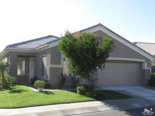 80557 Hoylake Drive, Indio, CA 92201 (MLS #217014776) :: Brad Schmett Real Estate Group