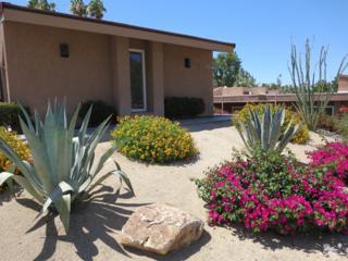 72412 Rolling Knolls Drive, Palm Desert, CA 92260 (MLS #217015044) :: Brad Schmett Real Estate Group