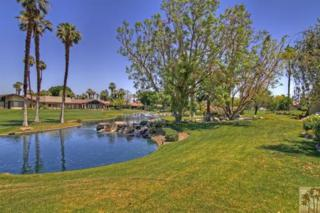 236 Running Springs Drive, Palm Desert, CA 92211 (MLS #217015566) :: Hacienda Group Inc