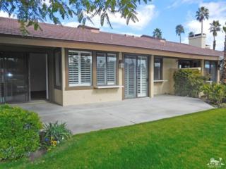 353 Bouquet Canyon Drive, Palm Desert, CA 92211 (MLS #217003522) :: Brad Schmett Real Estate Group