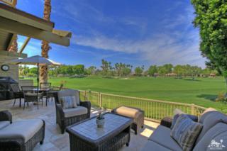 226 Wild Horse Drive, Palm Desert, CA 92211 (MLS #217011032) :: Brad Schmett Real Estate Group