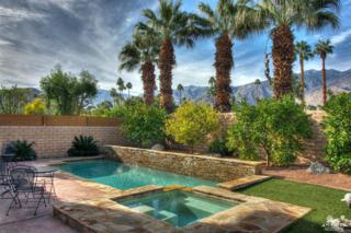 1351 Crystal Court, Palm Springs, CA 92264 (MLS #217008788) :: Brad Schmett Real Estate Group