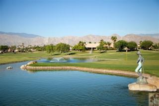 45553 Meadow Lake Drive, Indio, CA 92201 (MLS #217011652) :: Brad Schmett Real Estate Group
