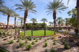 48080 Via Vallarta, La Quinta, CA 92253 (MLS #217013216) :: Brad Schmett Real Estate Group