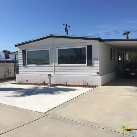 32031 San Miguelito Drive, Thousand Palms, CA 92276 (MLS #17238350PS) :: Team Michael Keller Williams Realty