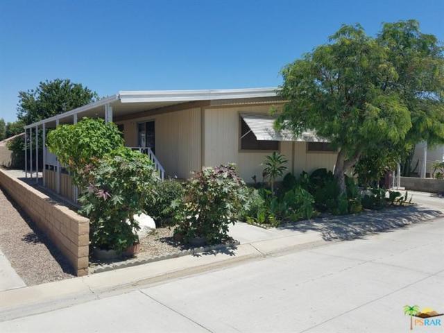 46618 Madison Street #21, Indio, CA 92201 (MLS #17246210PS) :: Brad Schmett Real Estate Group