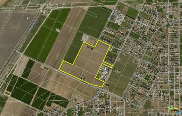 29520 11th Street, Nuevo, CA 92567 (MLS #17262358PS) :: Deirdre Coit and Associates