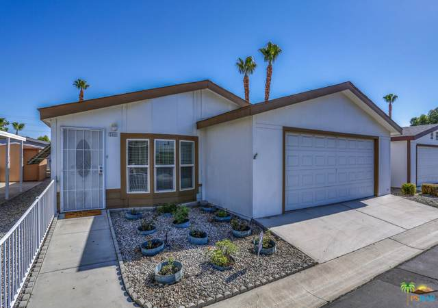 246 Settles Drive, Cathedral City, CA 92234 (MLS #19478658) :: The Sandi Phillips Team