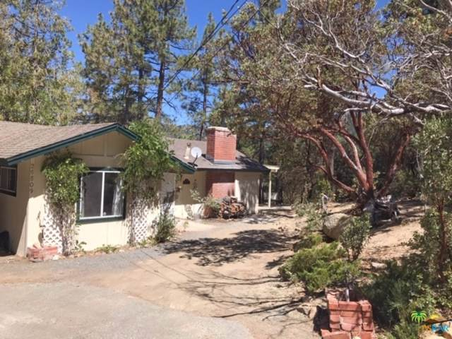 26509 Crestview Drive, Idyllwild, CA 92549 (MLS #19505310) :: The Sandi Phillips Team